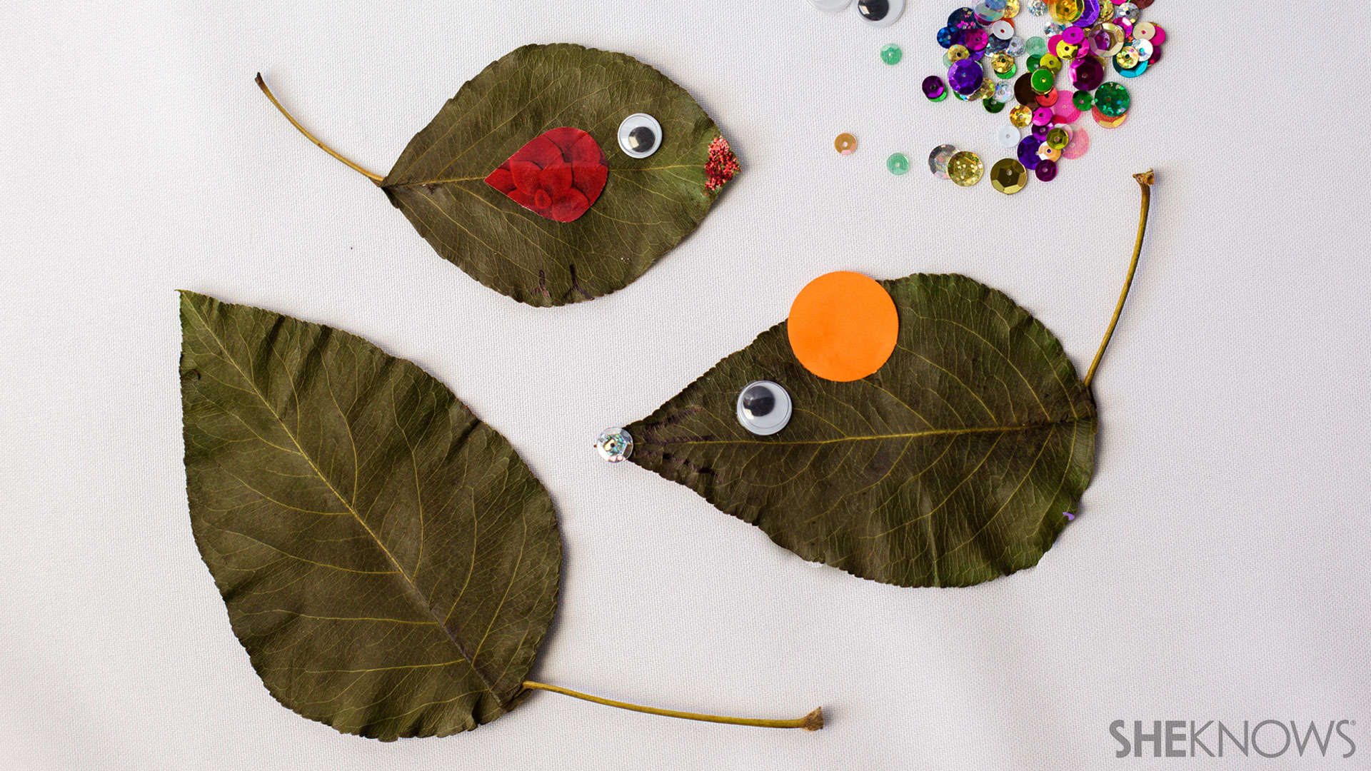 Leaf mice and fish