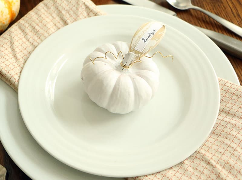 Mini diy pumpkin placecards place cards