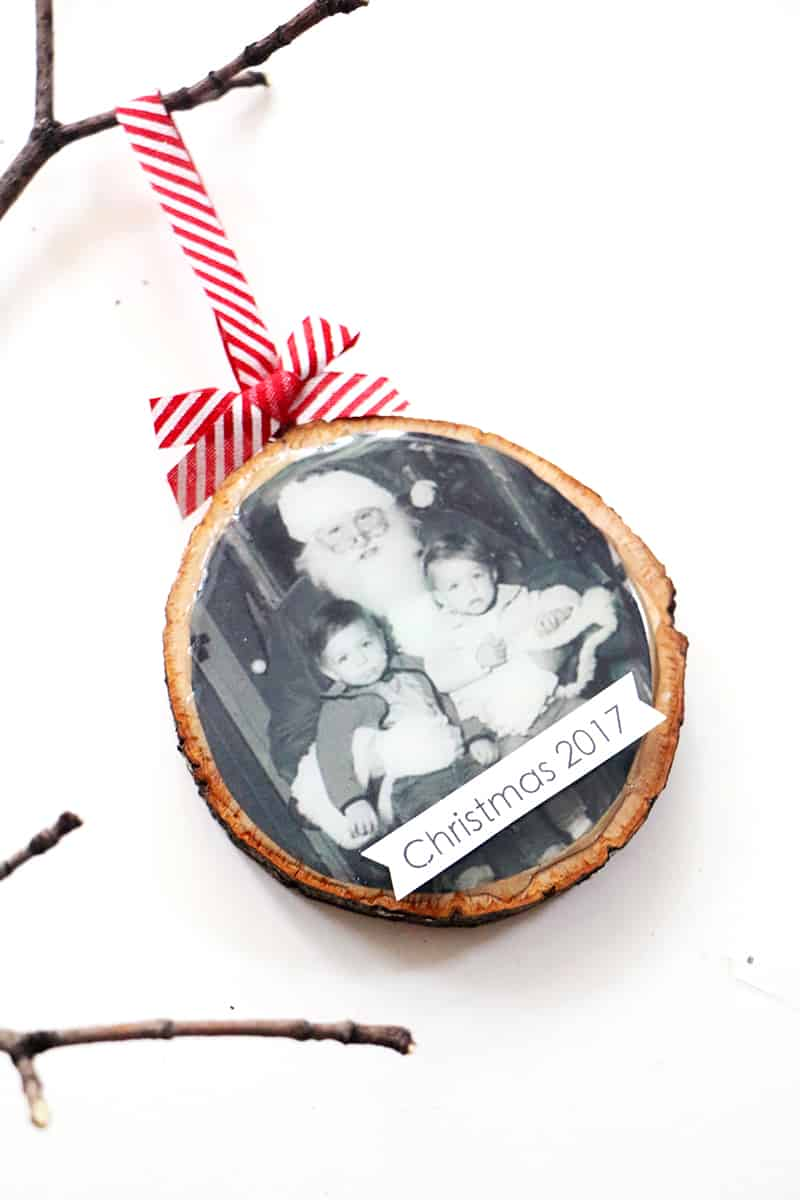 Tree diy wood slice ornament