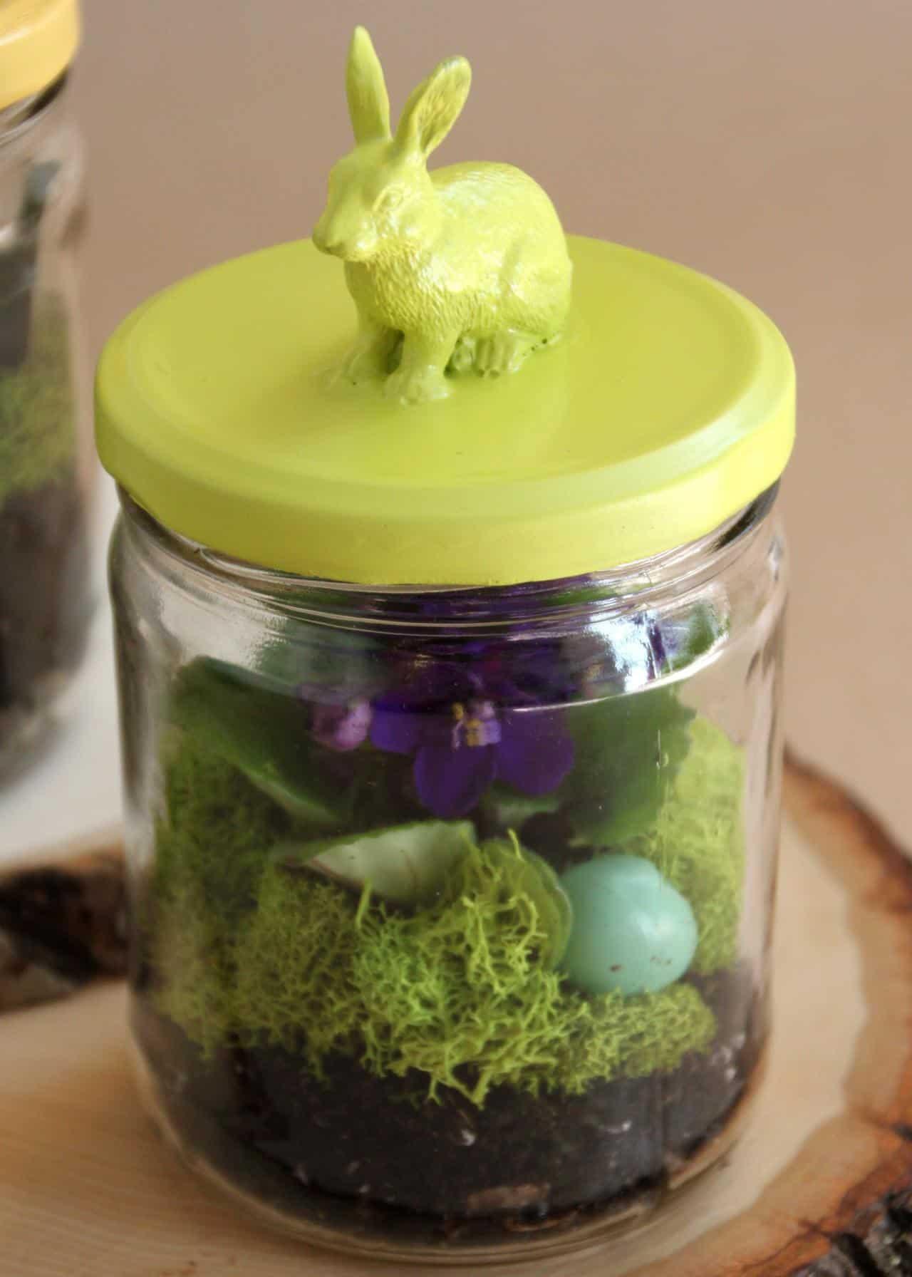 Bunny jar terrarium