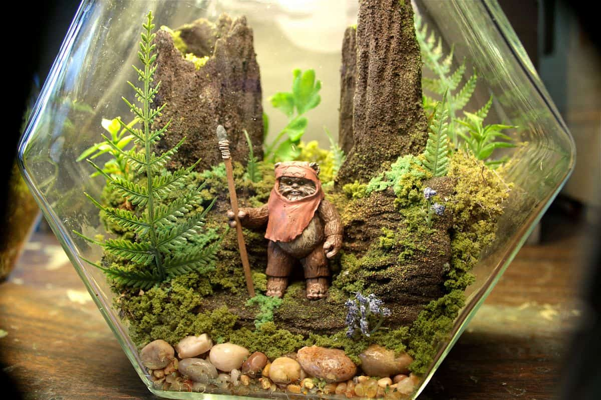 Star wars inspired ewok terrarium