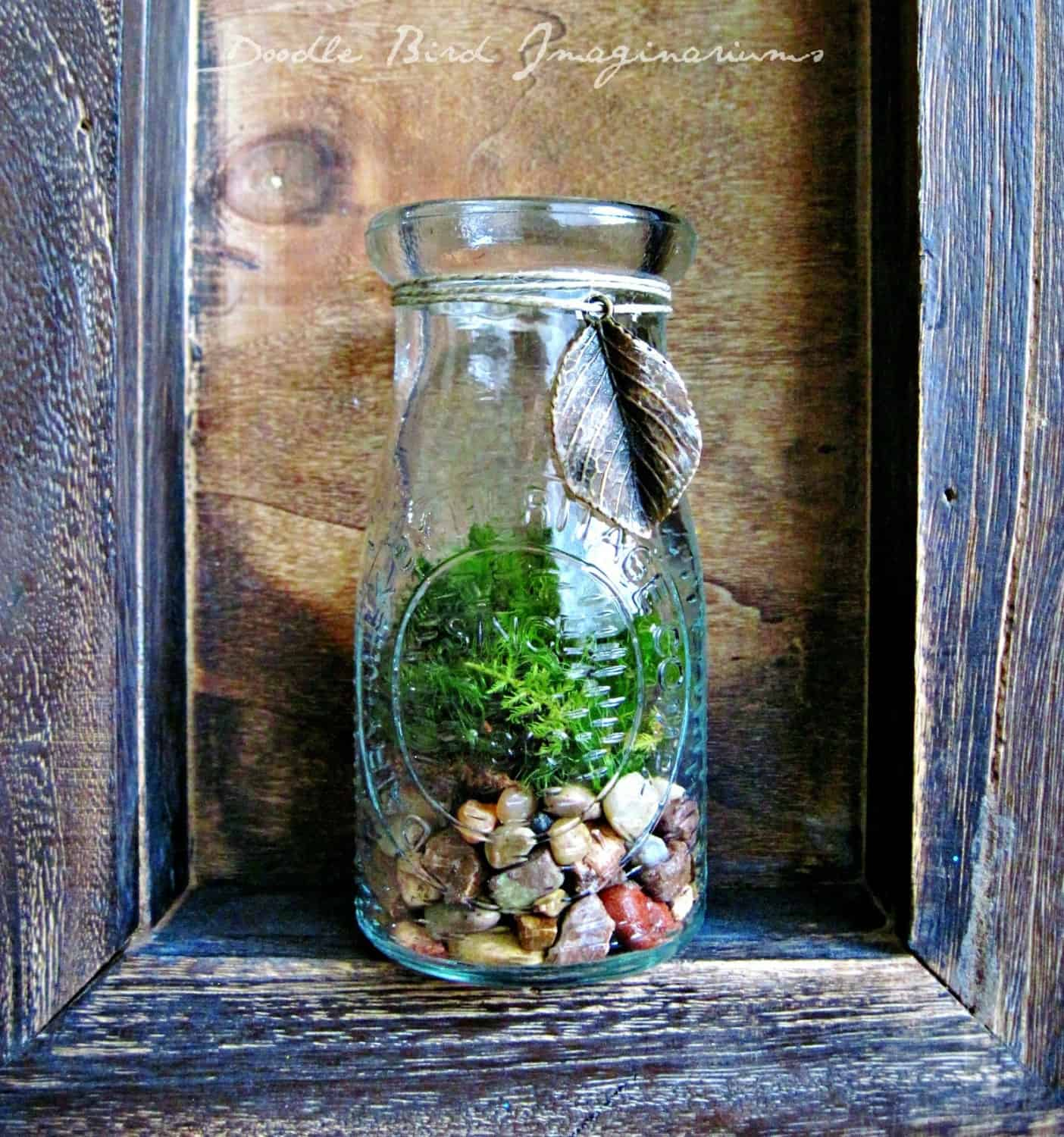 Upcycled milk bottle terrarium