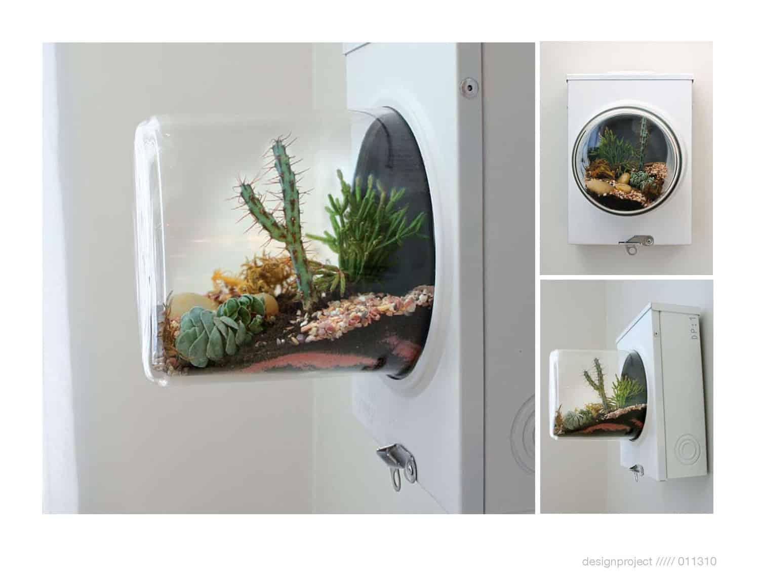 Wall hanging succulent terrarium