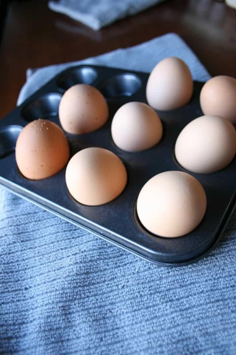 Boiled egg holder in muffin tin