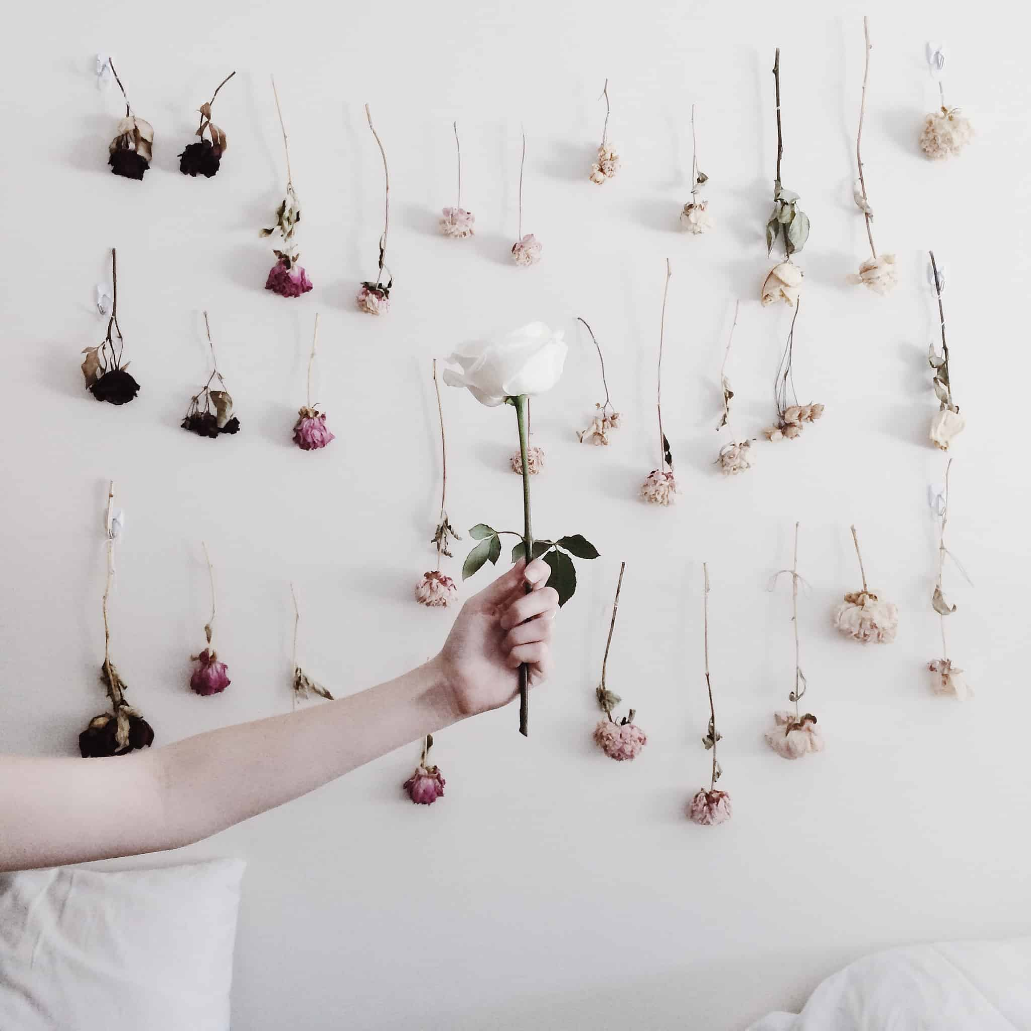 Diy Wall Flowers: 15 Crafts Made With Dried Flowers