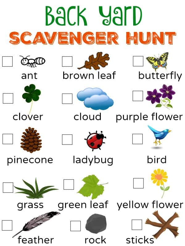 Go on a backyard scavenger hunt