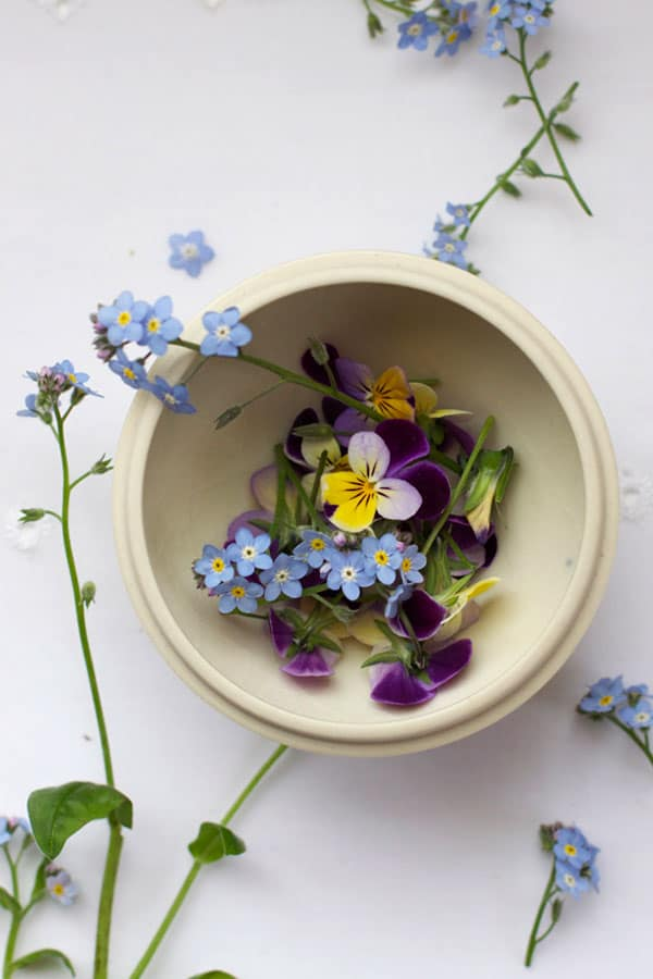 Pressed and dried flower confetti