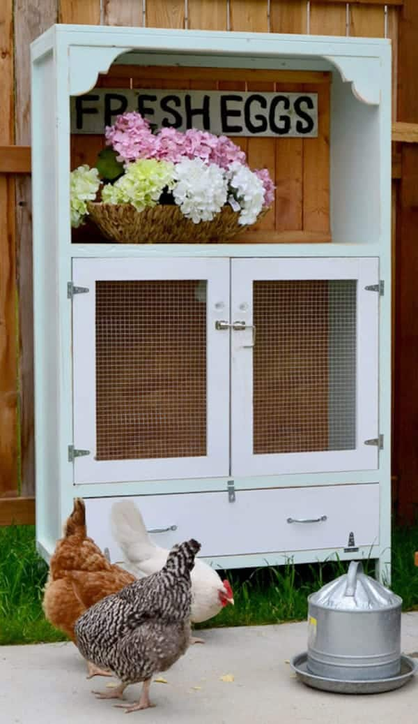 Diy chicken coop cabinet