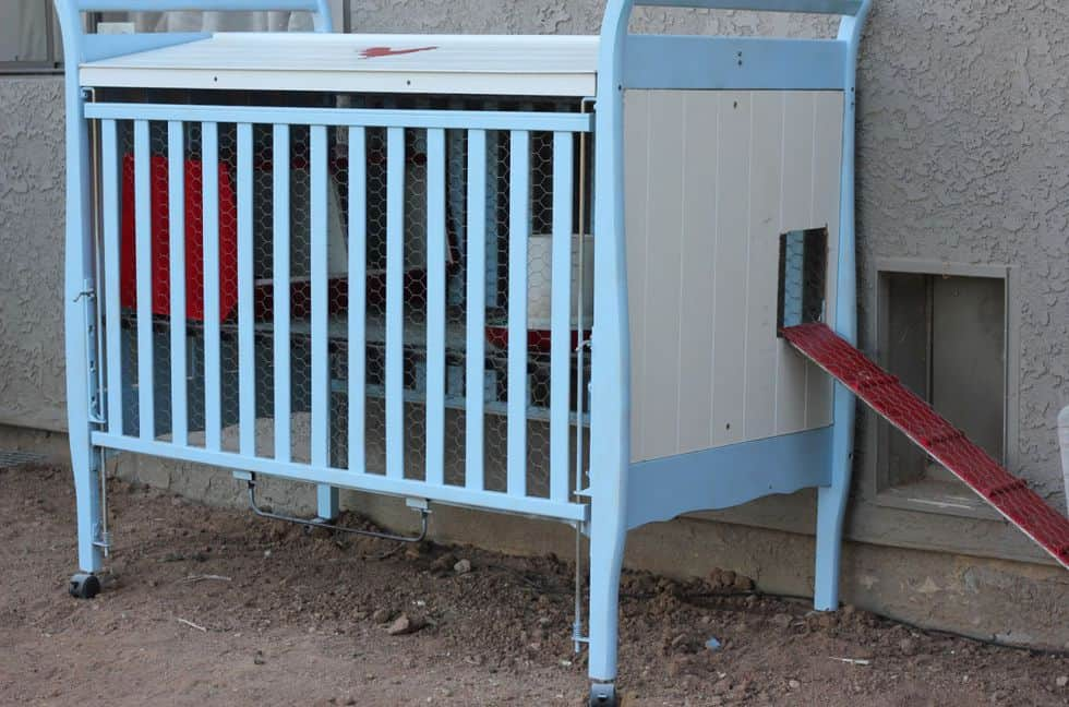 Diy repurposed crib chicken coop