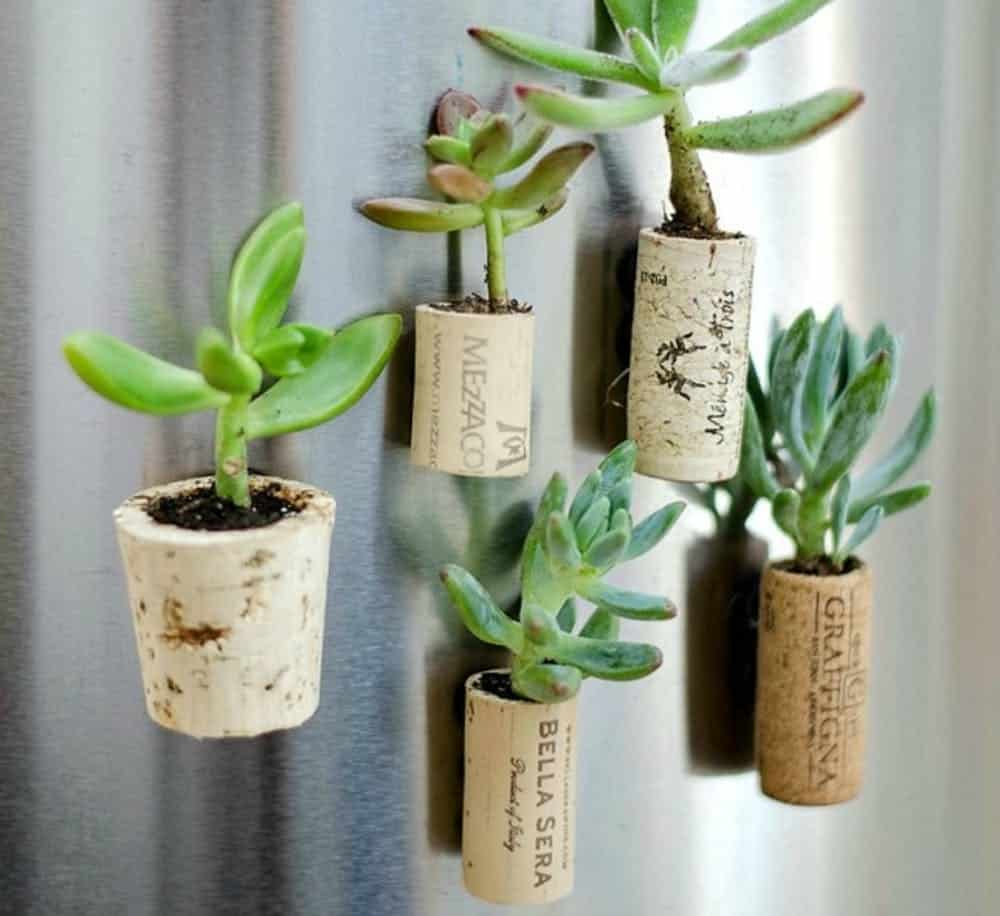 Diy wine cork magnet planter