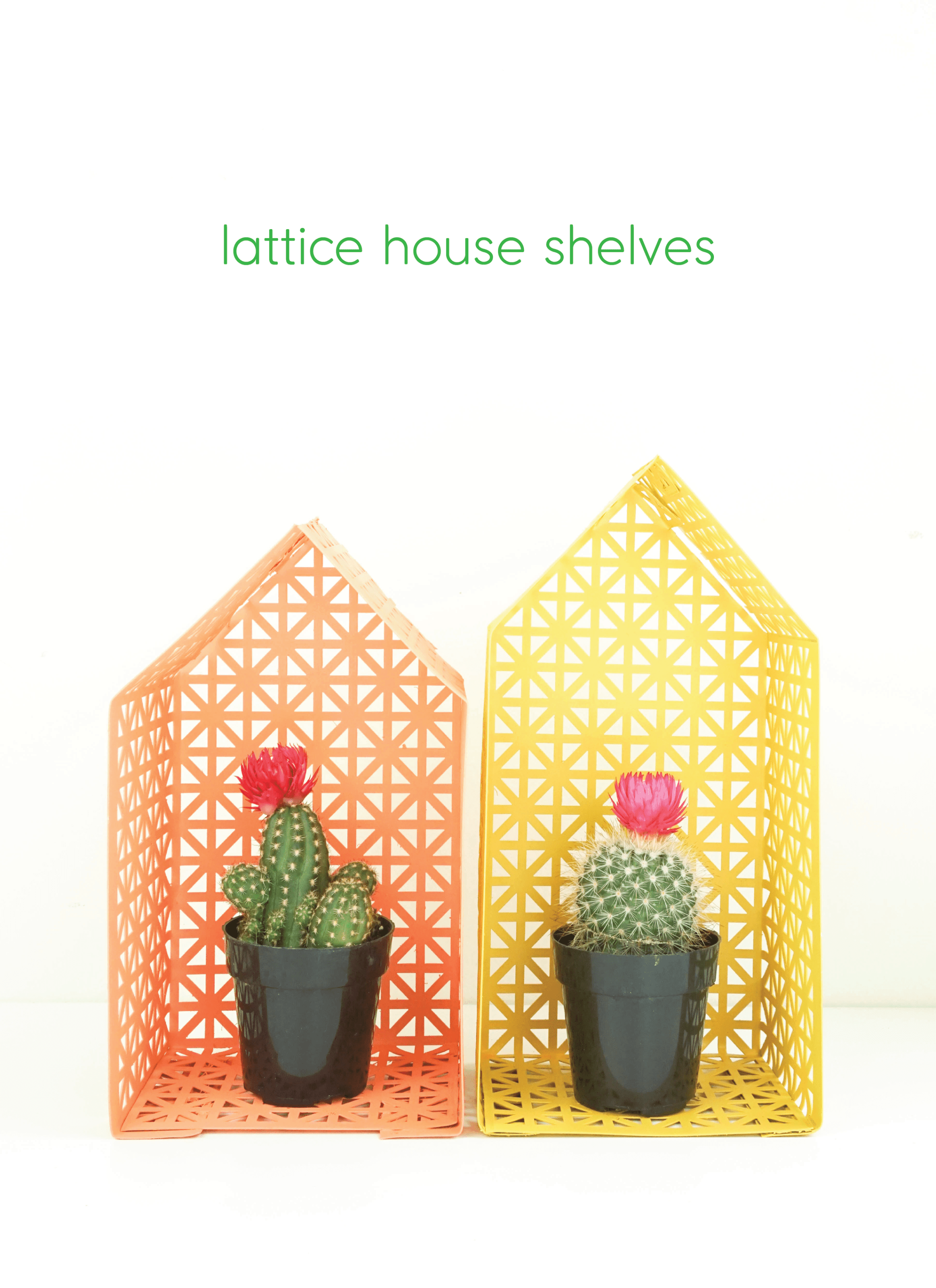 Lattice house shelves