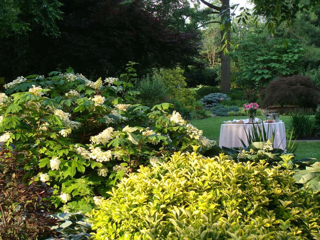 The gardens at ray eden venue