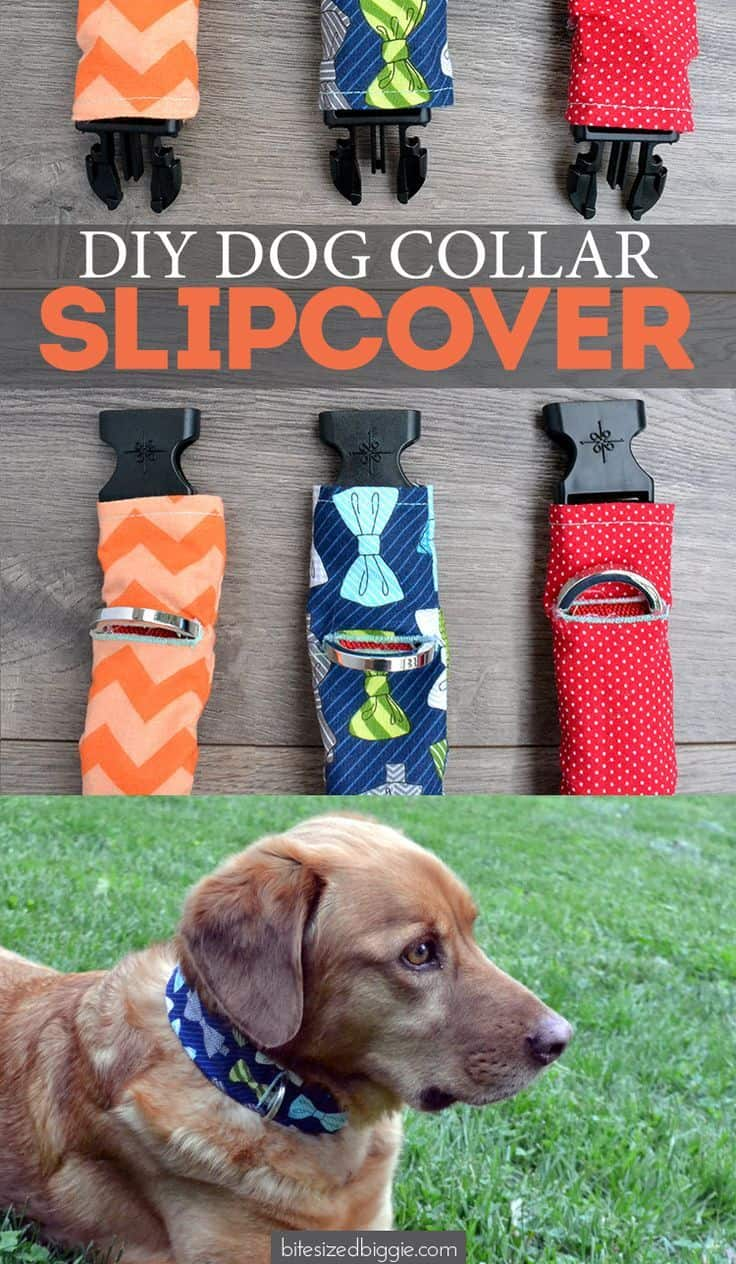 Diy dog collar slip cover