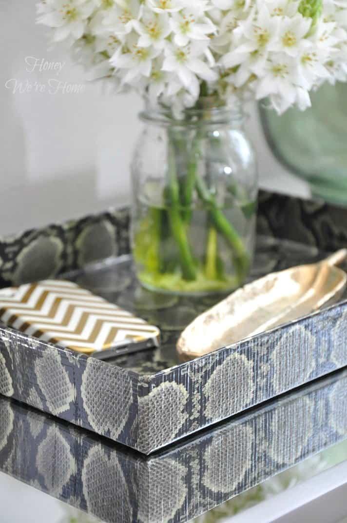 Snakeskin organizing trays