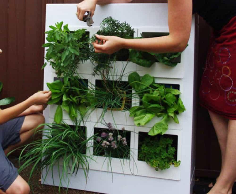 Diy cubby hole herb garden