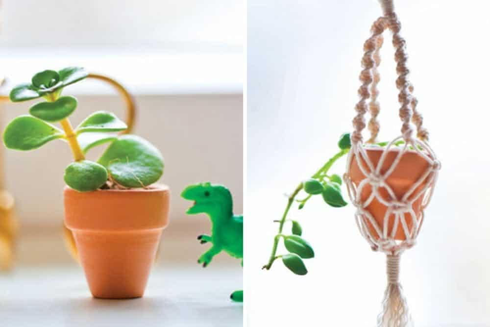 Diy micro planters