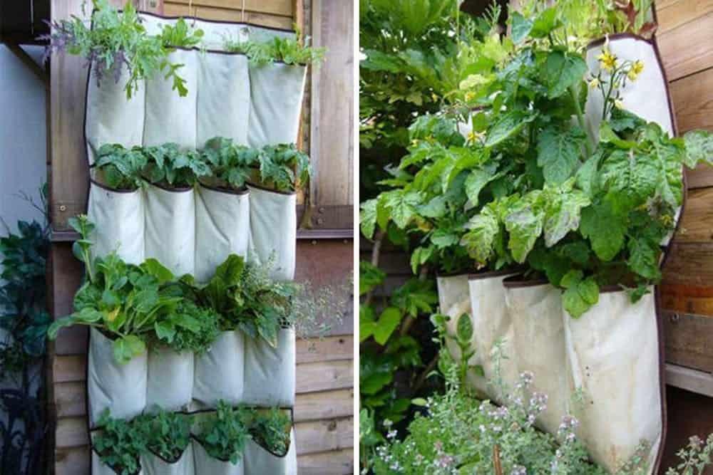 Diy show organizer vertical garden planter