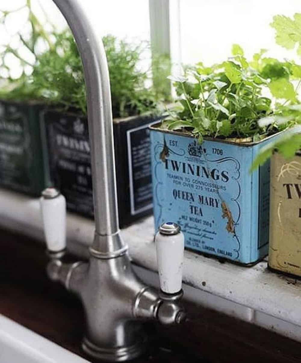 Vintage tea tin planters diy