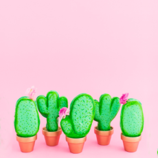 Cactus macarons with edible flowers
