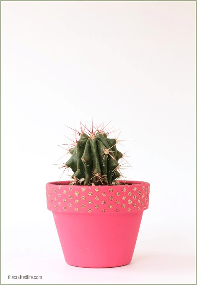 Glitter polka dot cactus planter