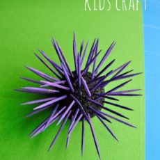 3d sea urchin kids craft