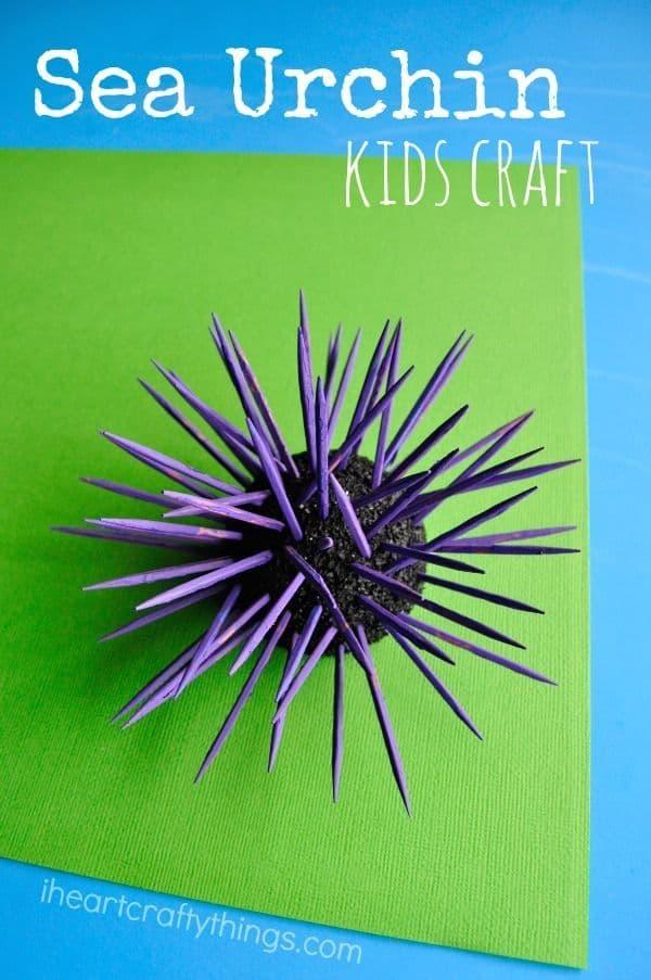 3d sea urchin kids craft