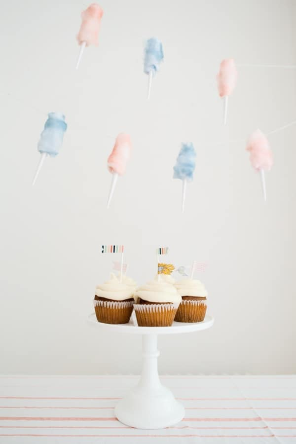 Cotton candy party garland
