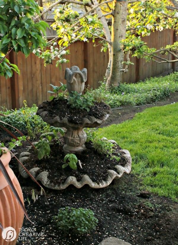 Diy tiered outdoor herb garden