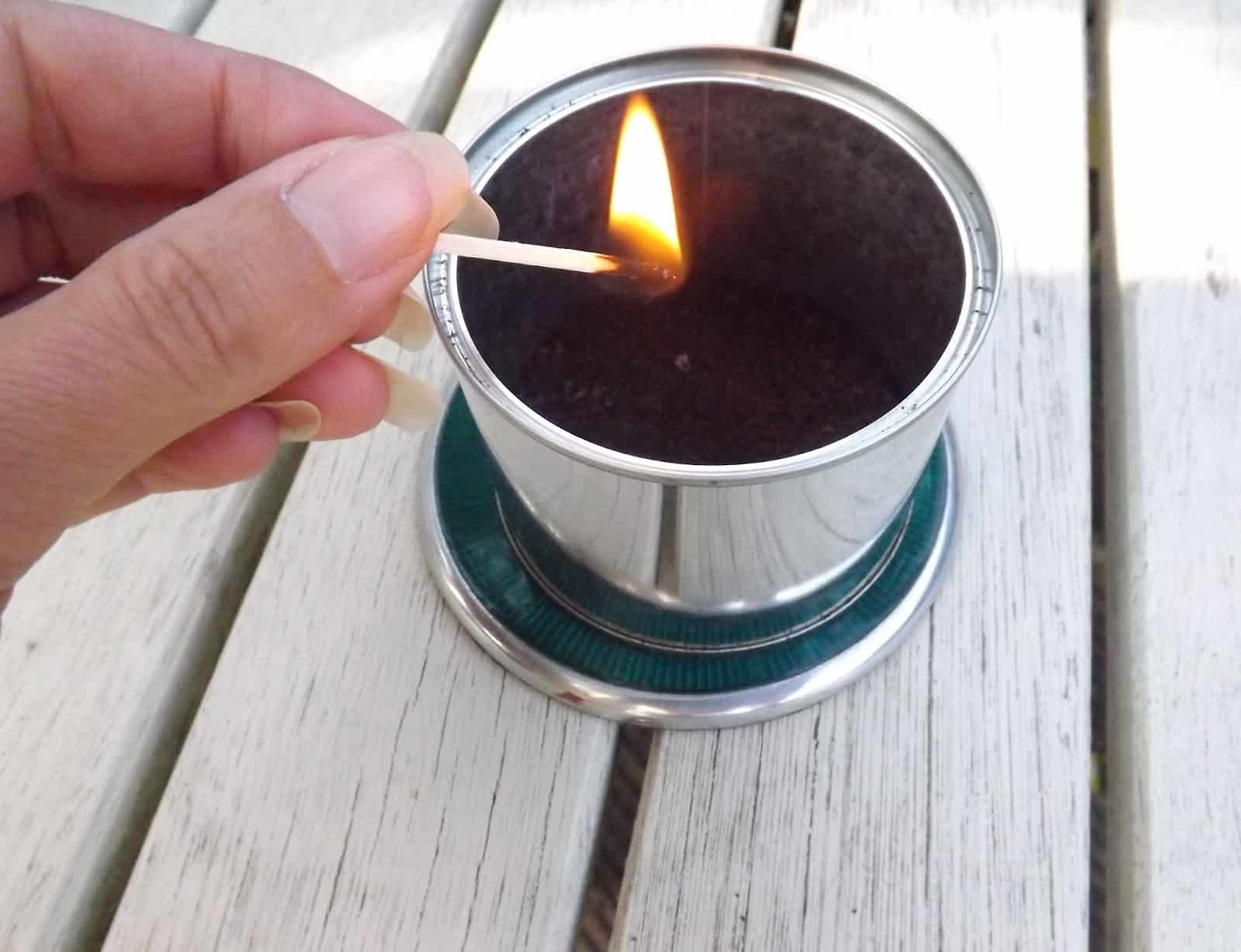 Diy tin can wasp deterrent