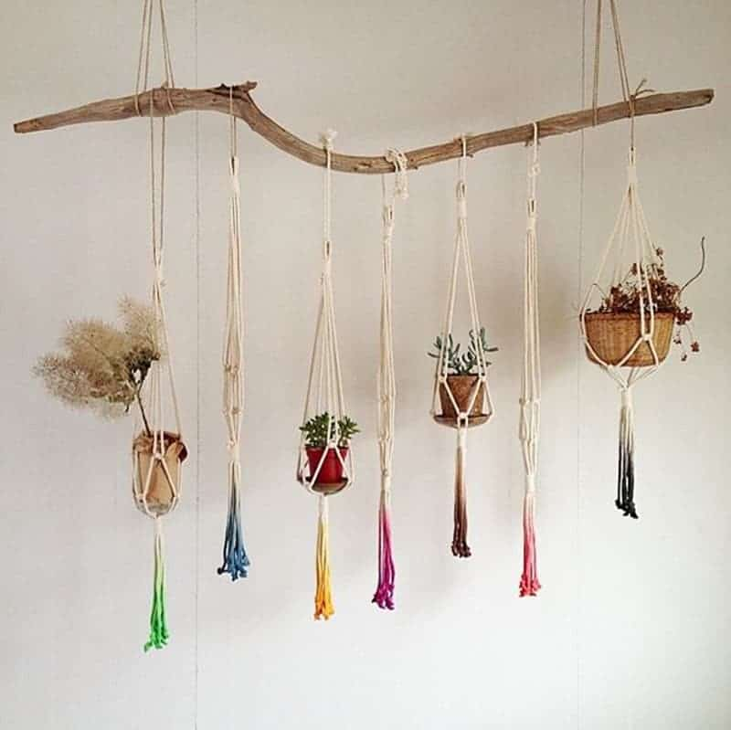 Dip dyed macrame hangers on a branch
