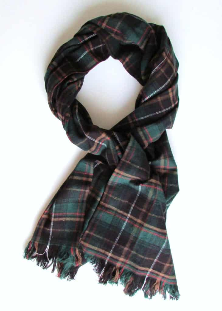 Plaid fall scarf with frayed ends