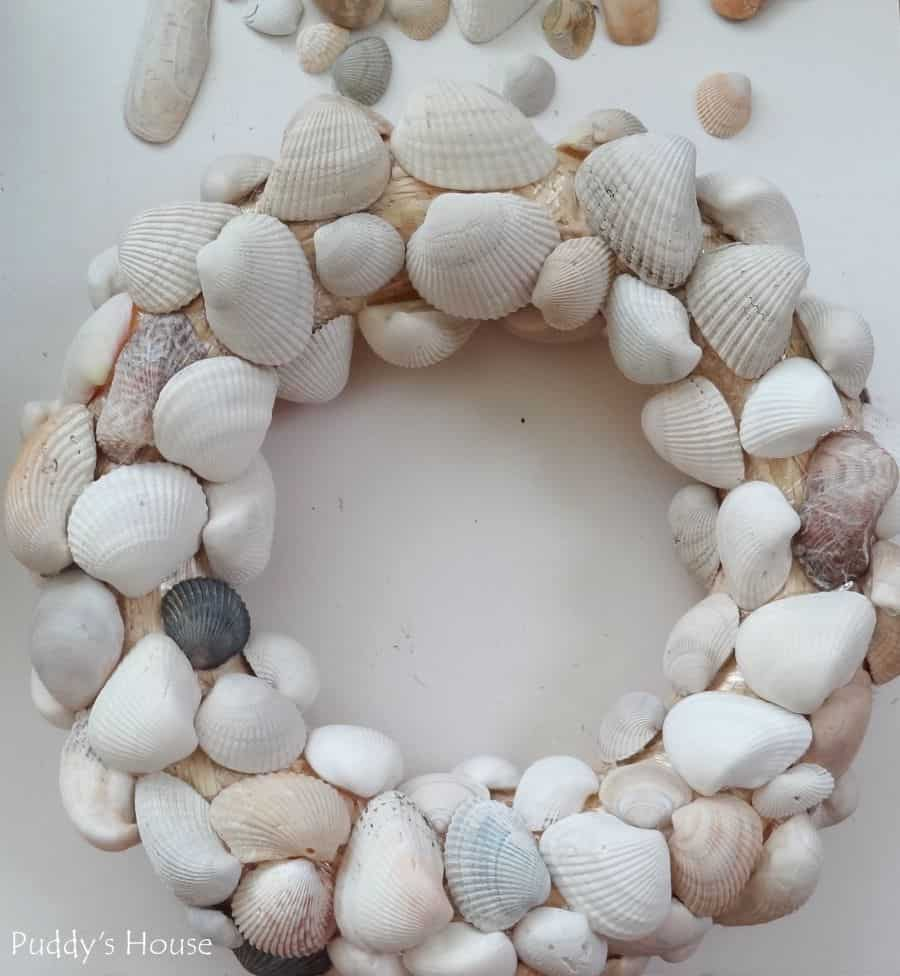 Pretty seashell wreaths