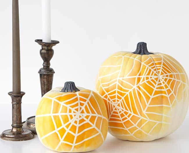 Spiderwebs pumpkins