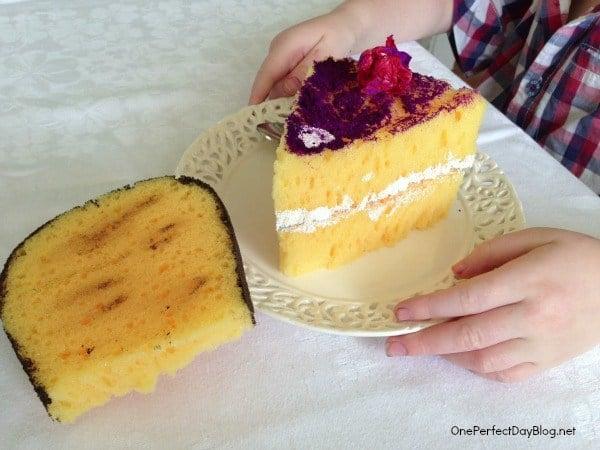 Diy toy sponge cake