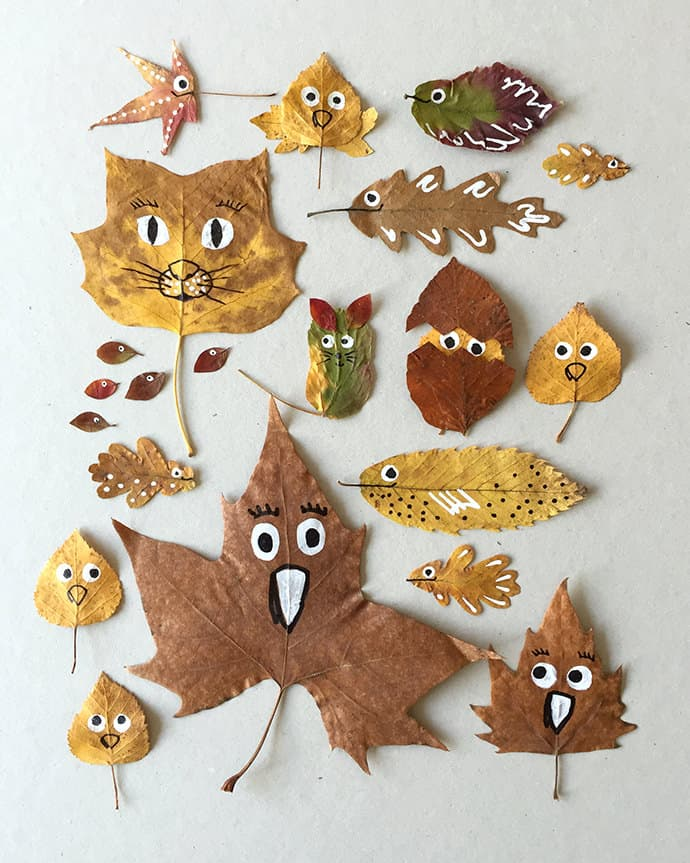 Quirky leaf faces