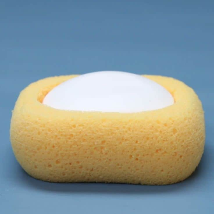sponge soap dish and scrubber
