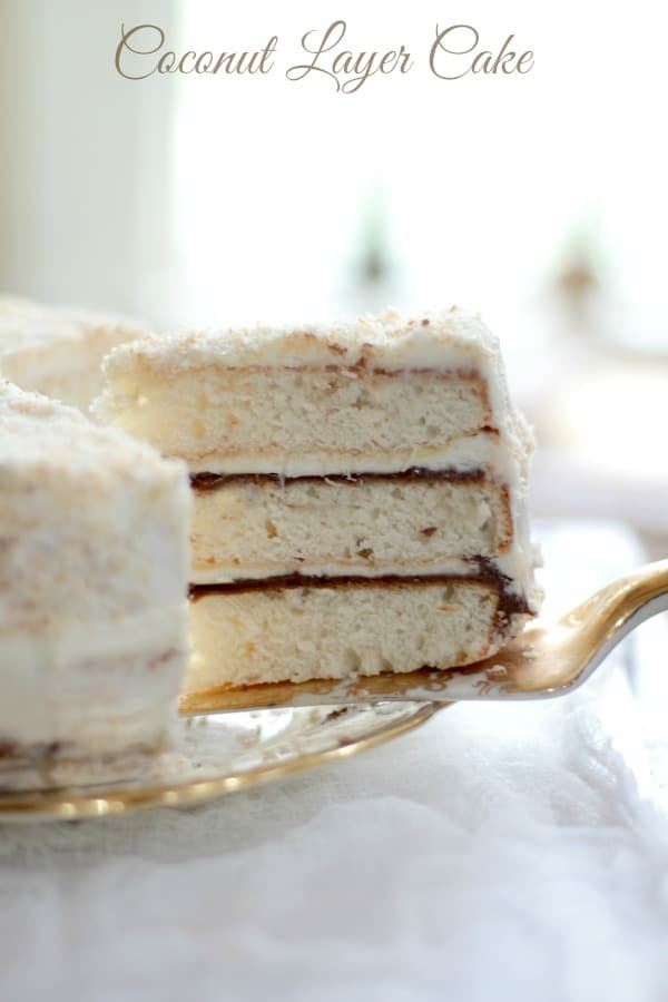 Coconut layer cake with nutella filling