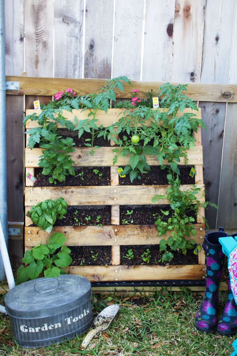 Consider a vertical pallet garden to save space