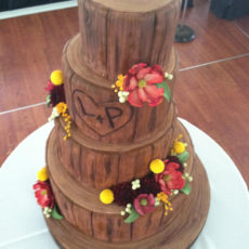 Fondant stacked tree stumps cake