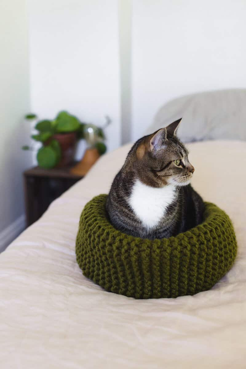 Make your own knit cat bed 14
