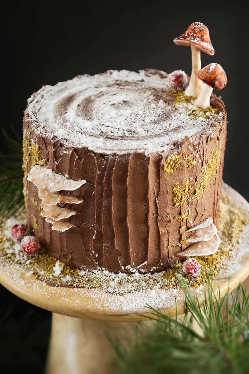Mulled wine stump de noel cake