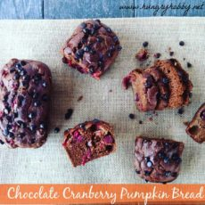 Chocolat cranberry pumplkin bread