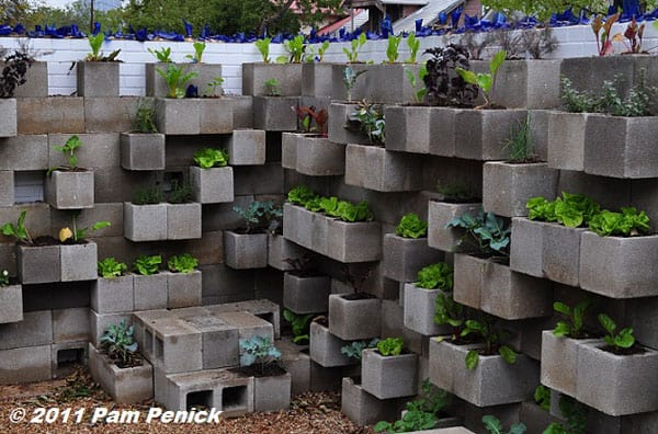 Cinder block vertical garden