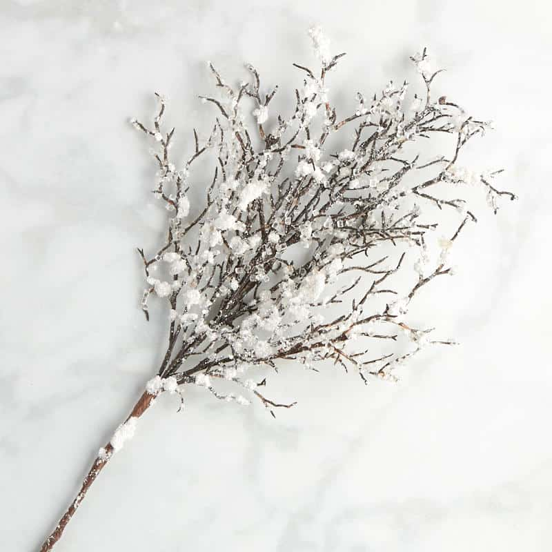 Frosted, glittery branch