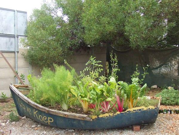 Garden in a boat