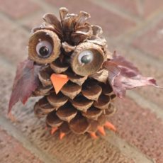 Pine cone, acorn, and leaf owls
