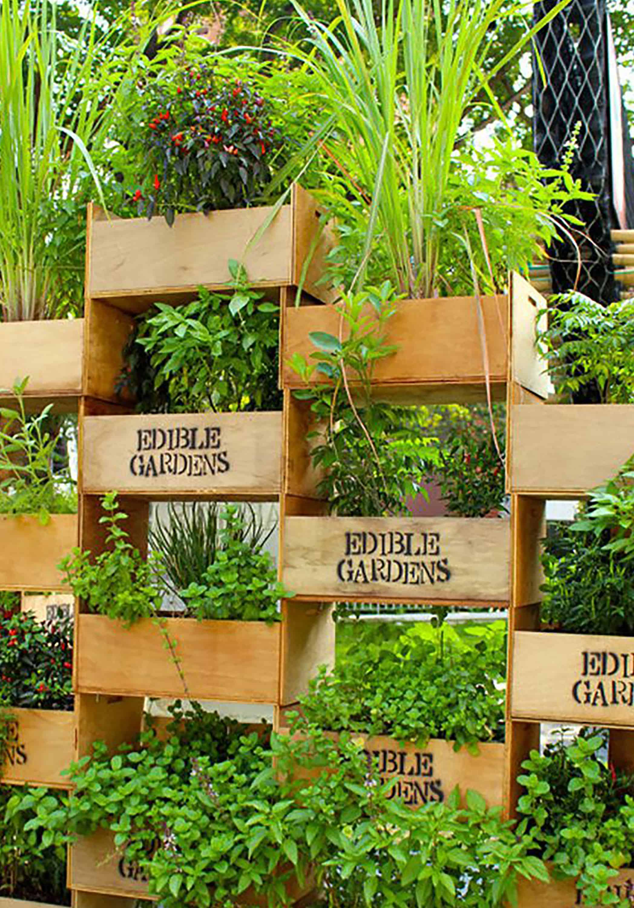Stacked rate vertical garden