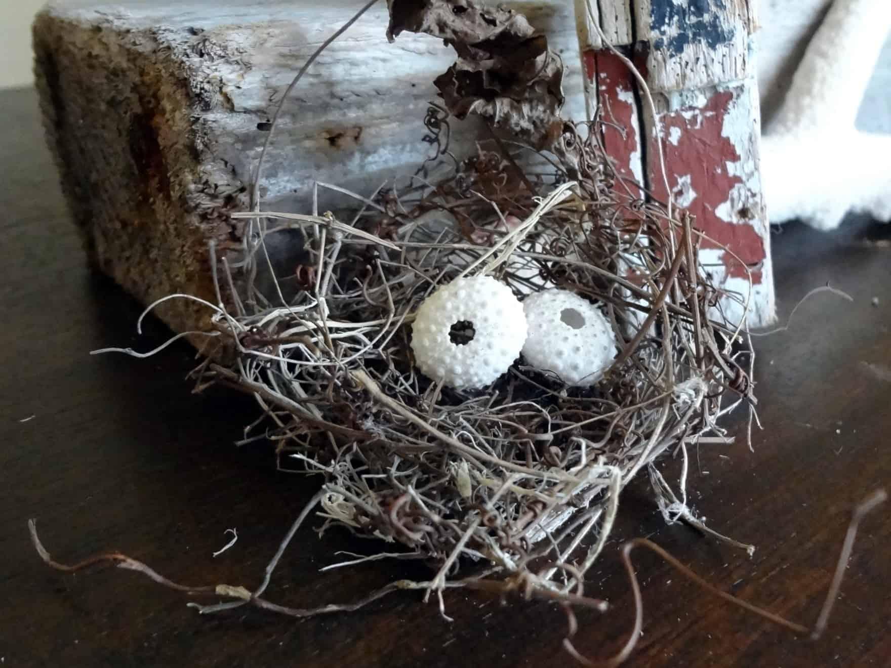 Twig and urchin christmas tree nest
