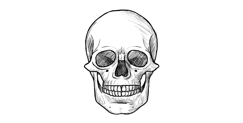 How to draw skull front final