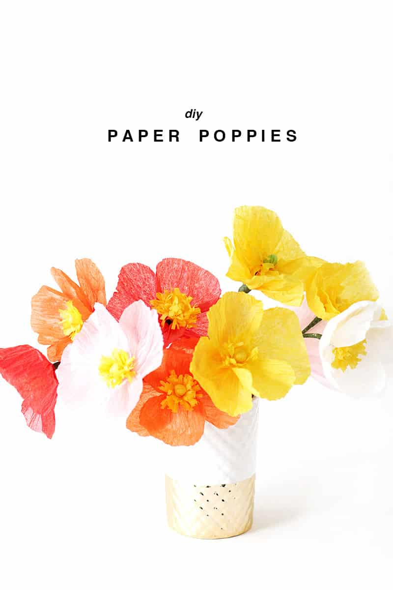 Diy paper poppies